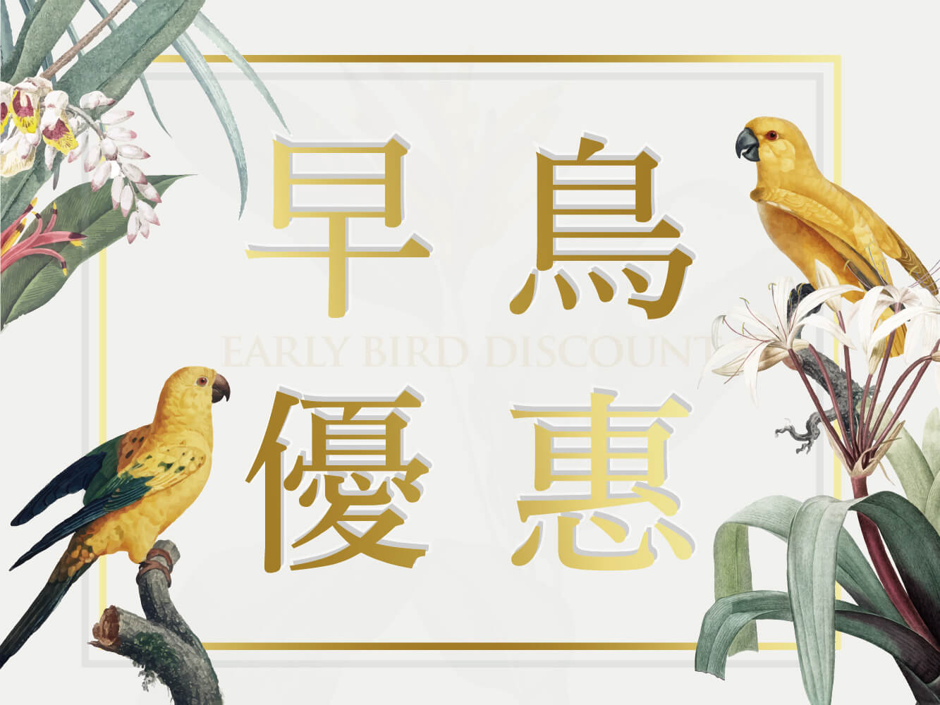Read more about the article 早鳥專案(一泊一食)